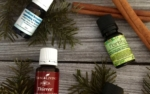 Thieves Essential Oil Blend: 5 Legendary Essential Oils