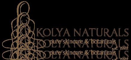kolya-logo-2017