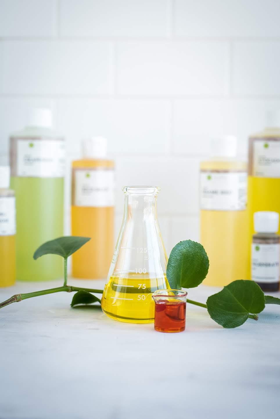 Carrier Oils | Kolya Naturals, Canada